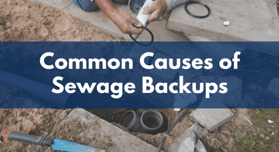 common causes of sewage backups header