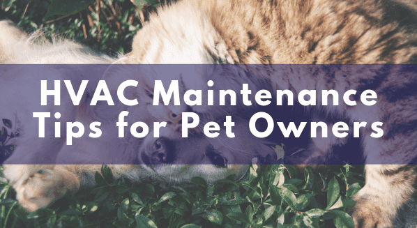 hvac maintenance tips for pet owners