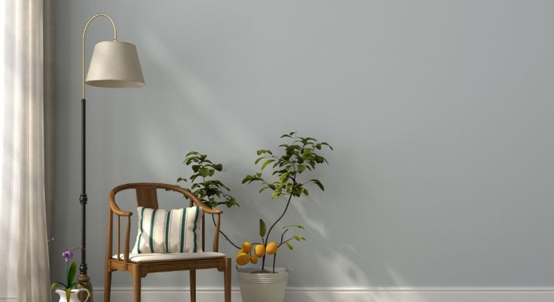 Lamp, Chair & Indoor Plant